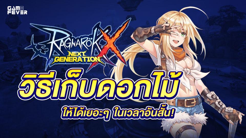 Ragnarok X: Next Generation วิธีเก็บดอกไม้ให้ได้เยอะๆ ในเวลาอันสั้น!